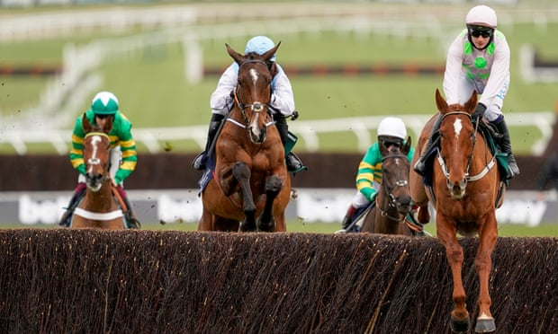 Talking Horses: BHA to act after Irish raiders dominate Cheltenham